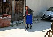 Día 10 - En Pirin