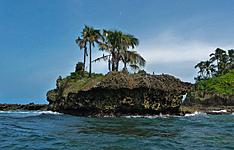 12 dìas de Aventura en el Bosque Lluvioso de Costa Rica y Bocas del toro