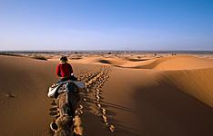 Desierto Básico